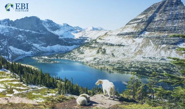 Tiểu bang Montana