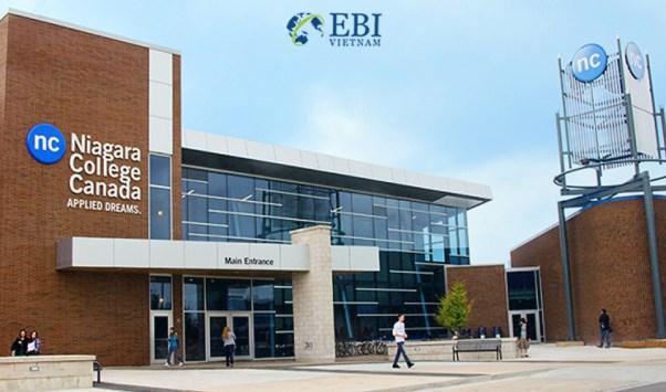 Học bổng du học Canada tại Cao đẳng Niagara