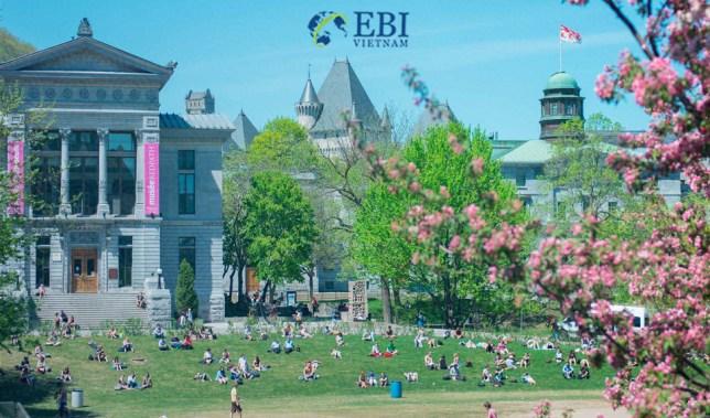 Khuôn viên của Đại học McGill (Canada)