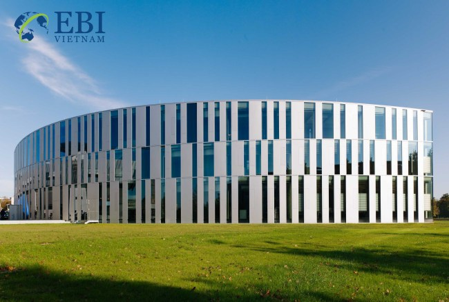 Đại học truyền thông Stuttgart – Hochschule der Medien Stuttgart