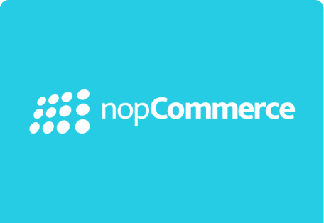 nopcommerce payment processing