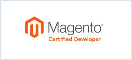 Magento developer