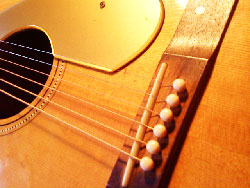 Ebony & Ivory Music Shop - Wide Selection Of Electric & Acoustic Guitars