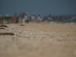 Chelsea Beach 4