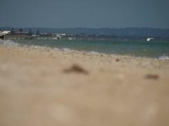 Chelsea Beach 5