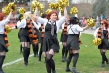 Rockdogs cheerleaders