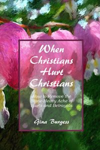 Book Cover: When Christians Hurt Christians