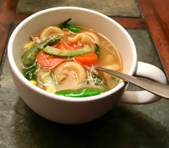 Chicken Veggie Zoodle & Noodle Stew