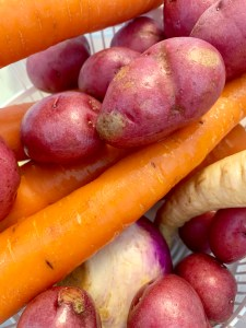 Veggies for Jiggs Dinner
