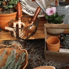 Amazon Prime, Spring Gardening
