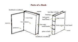 15 diagrams that show how a book is made