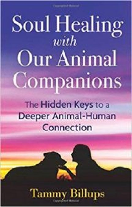 Soul Healing with Our Animal Companions The Hidden Keys to a Deeper Animal-Human Connection, 2nd Edition