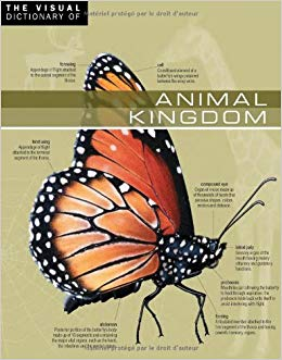 download The Visual Dictionary of Animal Kingdom
