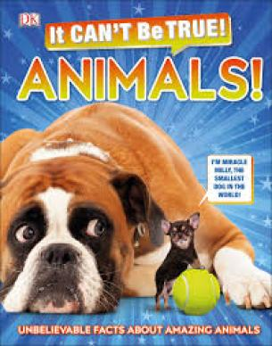 It Can't Be True! Animals!