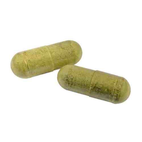 elderberry-e-hist-capsules-seasonal-allergy-support