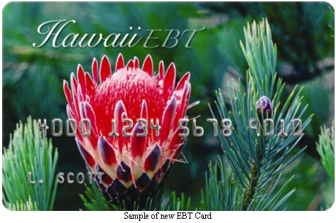 Hawaii EBT Card Balance Check