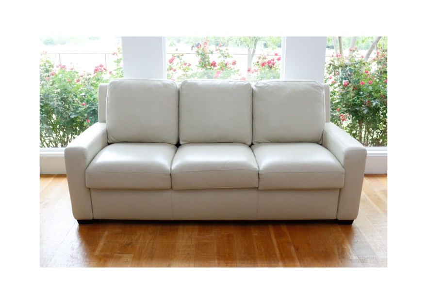 Leather Pull Out Loveseat