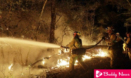Firefighters Gain Ground Against Wildfire In California ebuddynews