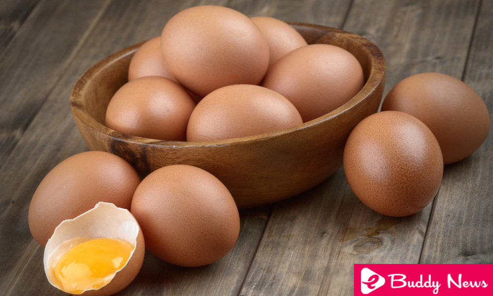 Five Reasons To Eat More Eggs ebuddynews
