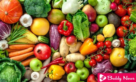 Veganism Is The Best Way To Save The Planet - ebuddynews