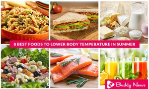 8 Best Foods To Lower Body Temperature In Summer - ebuddynews