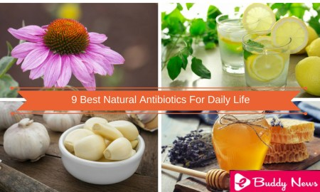 9 Best Natural Antibiotics For Daily Life - ebuddynews