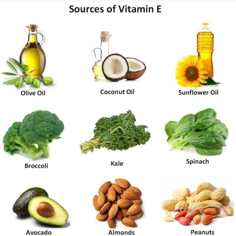 Importance Of Vitamin E In Your Daily Life - ebuddynews