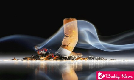 Know The Nasty Effects Of Smoking On Your Body - ebuddynews