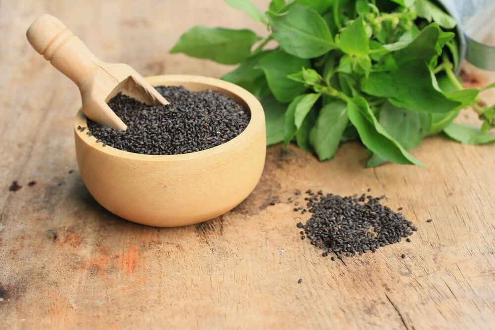 5 Best Vegetable Sources of Omega 3 Fatty Acids - ebuddynews
