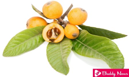 11 Interesting And Incredible Benefits Of Medlar Leaves - eBuddy News