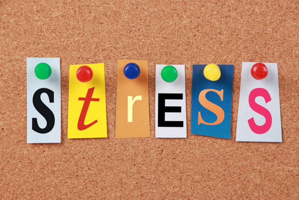 What is Stress? - eBuddy News
