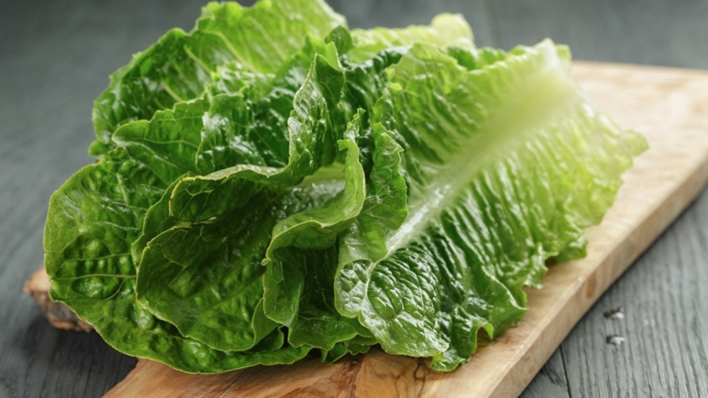 Benefits of Lettuce - eBuddy News