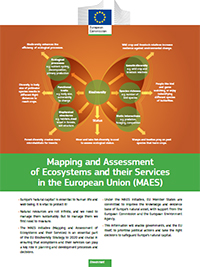 Environment fact sheets   Environment   European Commission     Circular Economy