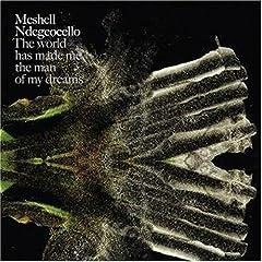 Me'Shell Ndegeocello's New Album