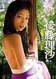 幻想クノイチ忍法帖 後藤理沙 MTK [DVD]