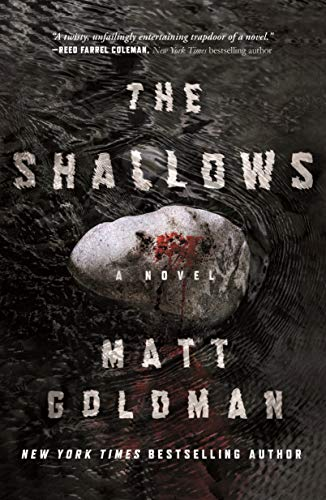 The Shallows: A Nils Shapiro Novel  Matt Goldman