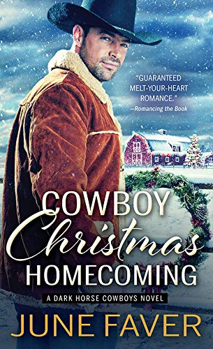 Cowboy Christmas Homecoming (Dark Horse Cowboys Book 4)  June Faver
