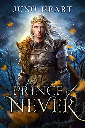 Prince of Never: A Fae Romance (Black Blood Fae Book 1) Juno Heart
