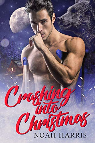 Crashing Into Christmas: A Christmas story  Noah Harris