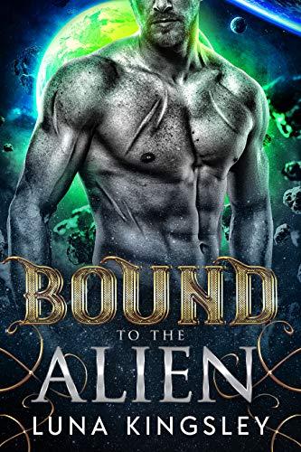 Bound to the Alien (An Alien Abduction Romance) (Roh'ilian Warrior Series Book 2)  Luna Kingsley