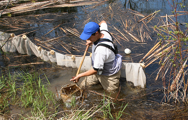 Natural Resources Leadership Academy Instructor John Matthews wades in a lake and collects aquatic insects with a net.