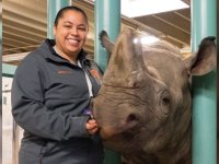 Fisheries and wildlife sciences alumna Erin Mathias is pictured standing to the left of a rhinoceros at the Oregon Zoo. Erin is smiling and resting one hand on the rhino's snout. She wears a gray and orange Oregon State zip-up jacket.