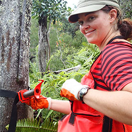 Irene collects samples from sandalwood trees for her master's thesis project.