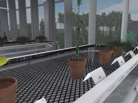 A screenshot of the virtual greenhouse used in Alyssa Duval's online classrooms. On the nearest table in the greenhouse, there are several potted plants with white label cards in front of them.