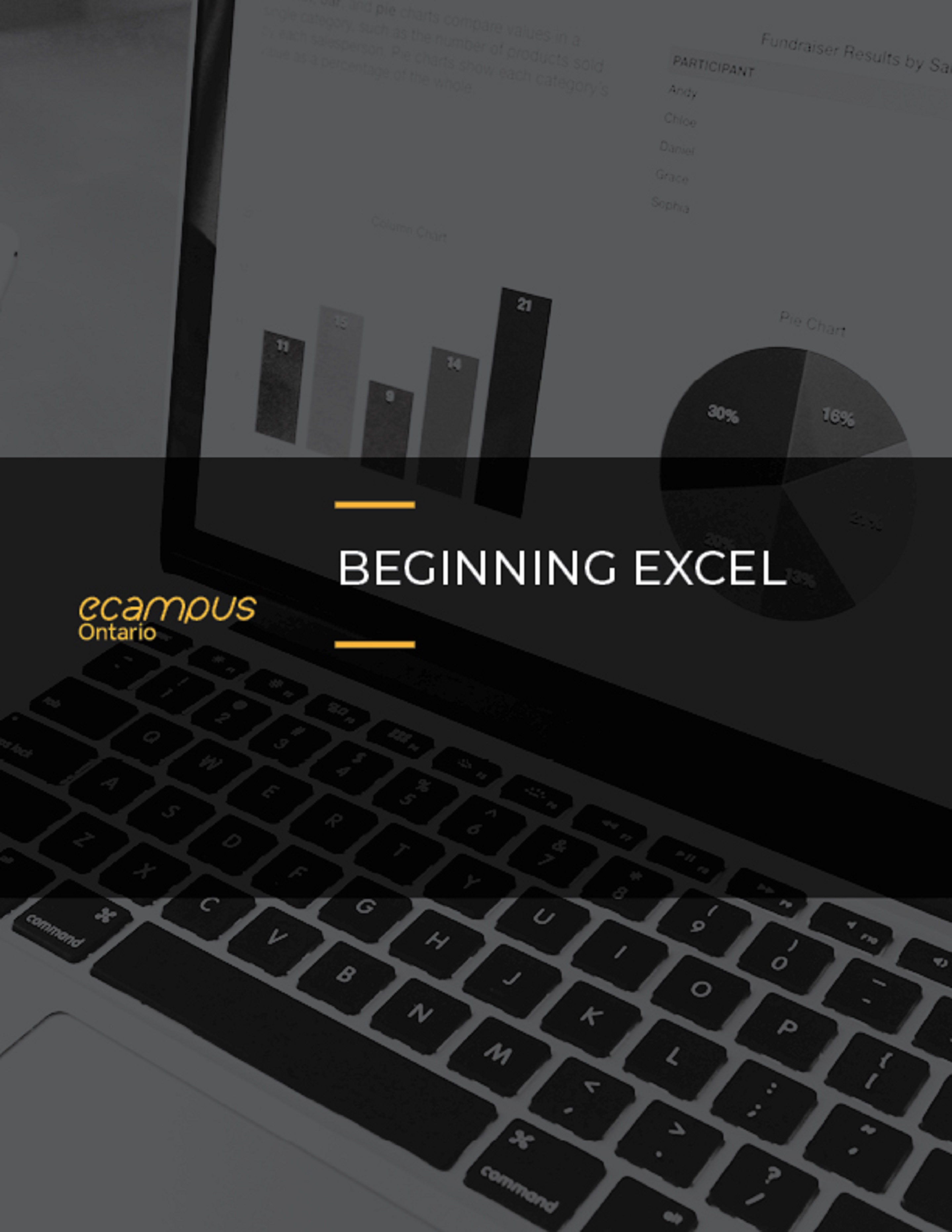 Beginning Excel Simple Book Publishing