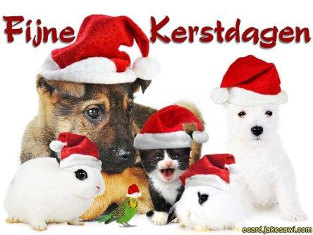 Afbeeldingsresultaat voor fijne kerstdagen