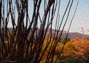 Painted Desert - lisadrewphotos