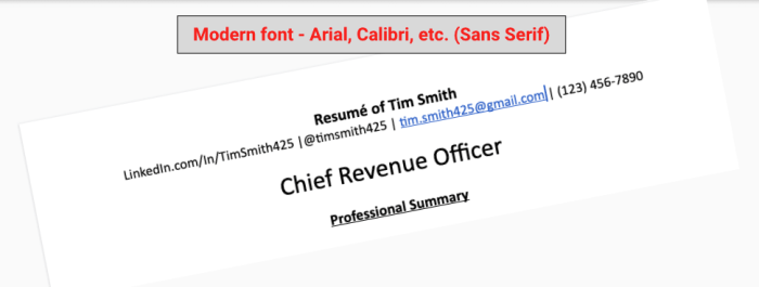 This graphic shows how the header area of a resume should look. Use a modern font.