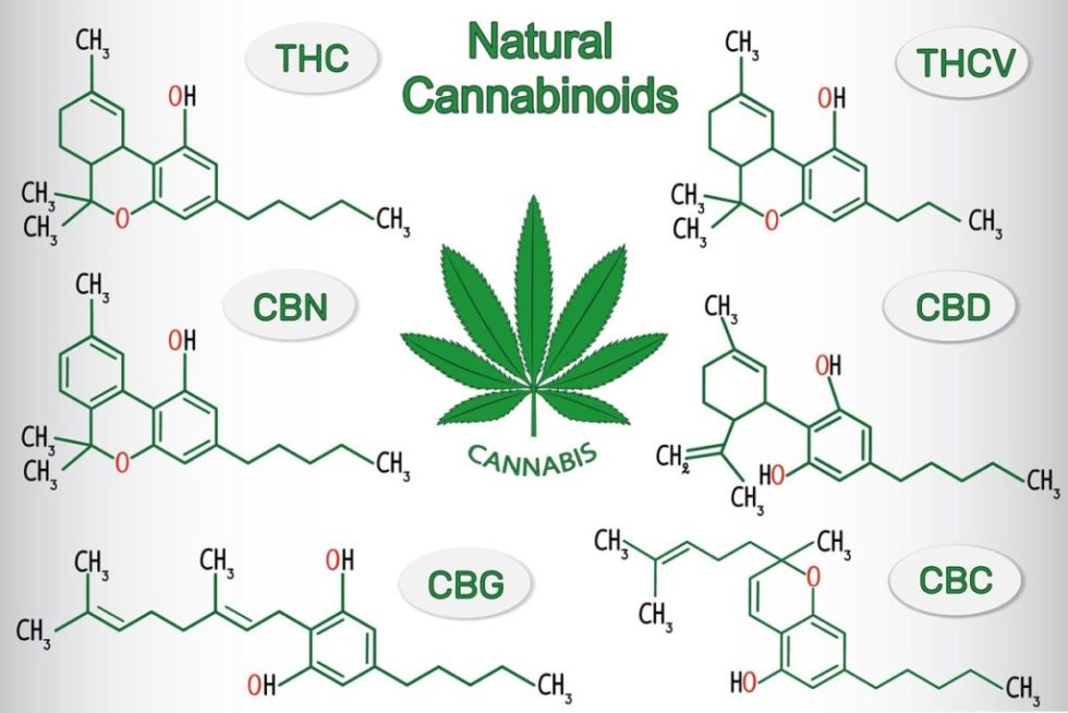 https://www.greencultured.co/what-does-cannabigerol-cbg-cannabinoid-do/