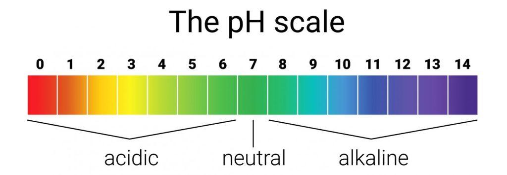 ph squilibrio acido base